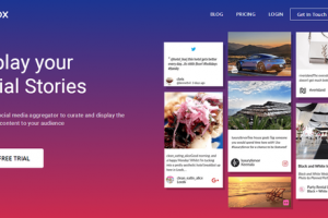 Why & How To Embed Twitter Feed On Website