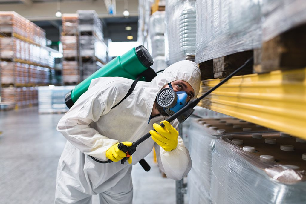 You may consider hiring a professional pest control service if your home or garden is affected by pests. However, you have to think about which business you can trust, as these days there are a lot of them on the market.