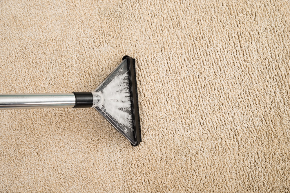 wet carpet cleaning northern beaches sydney