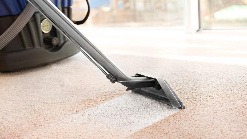 Wet Carpet Cleaning Techniques