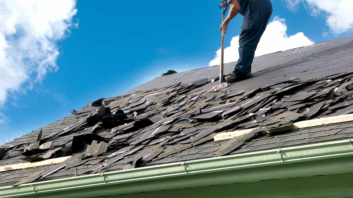 Reasons For The Popularity Of Steel Roofs