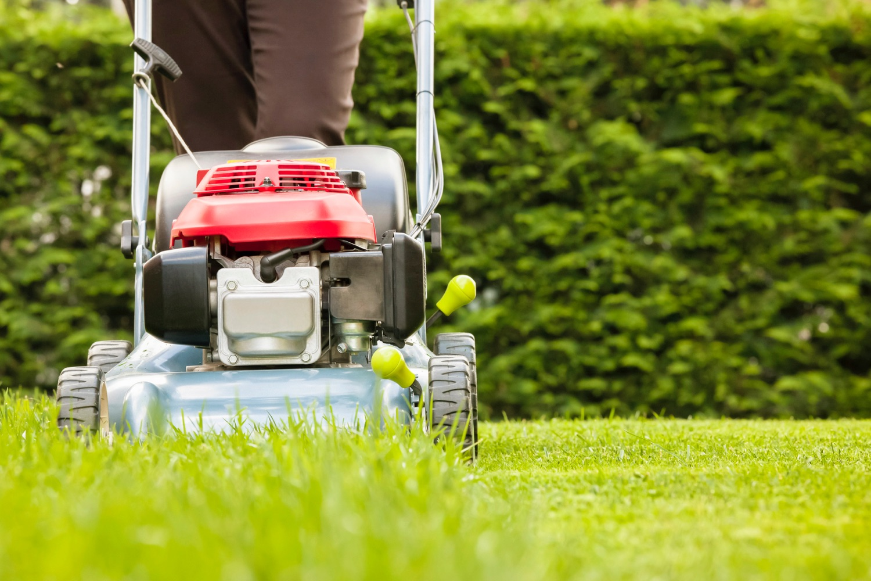 Eco-Friendly Lawn Care Equipment